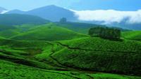 Kerala-Tourism-300x229