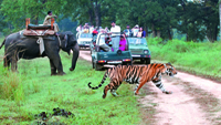jim-corbett-national-park-thmb