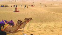 thar_desert