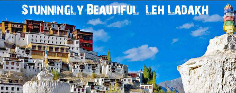 leh-banner