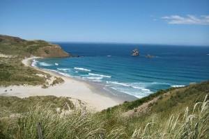 newzealand-sandfly-bay-otago-peninsula-03