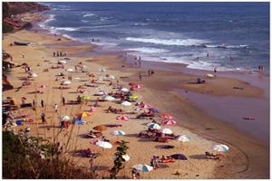 varkala-beach_thmb